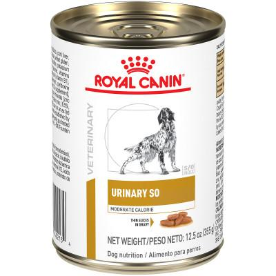 Gastro Intestinal : Croquettes Chat | Royal Canin